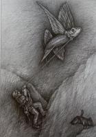 Seilschaft, 2020, Bleistift, 53x39 cm