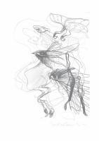 wendepunkt-2013-zeichnung-25x165cm