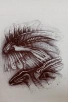 Bestiarium 6, 2029, Kugelschreiber, 32x23 cm